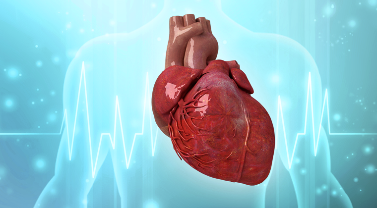 Cardiac Boot Camp - Skills On Point Affiliate Course